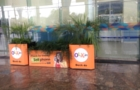 Planters on Airport